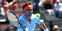 DAVID FERRER TENNIS STAR IS TRYING FOR HIS FIFTH TITLE thumbnail
