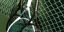 10SBALLS TENNIS SHARES A PHOTO GALLERY OF OUR FRIENDS thumbnail